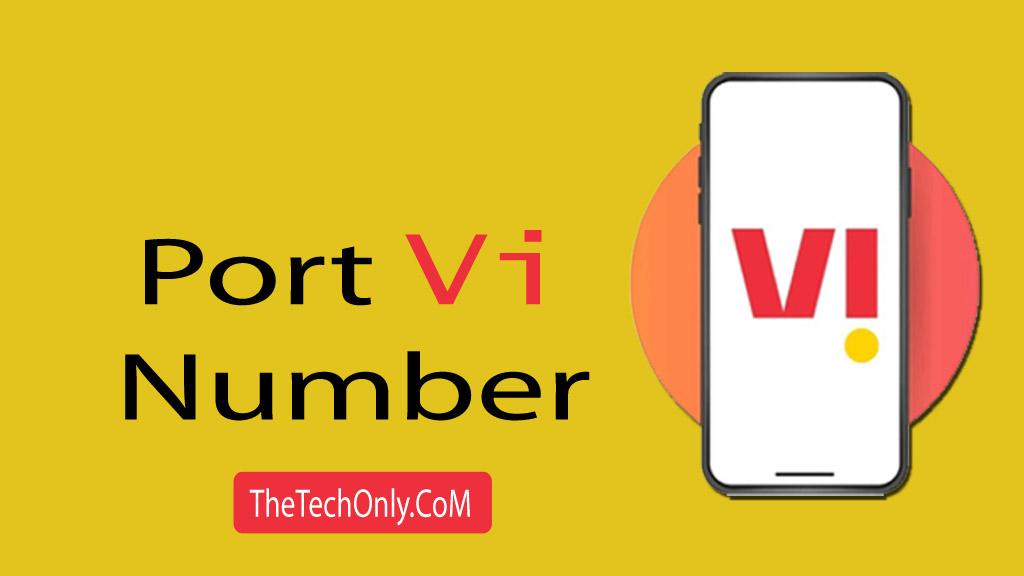 Port Vi Number
